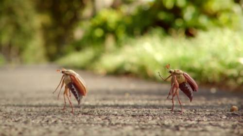 Opel Ampera-e Kills Bugs, Baffles Almighty God in Latest WTF Ad