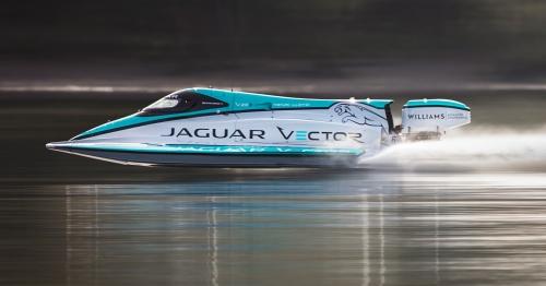 jaguar-vector-9